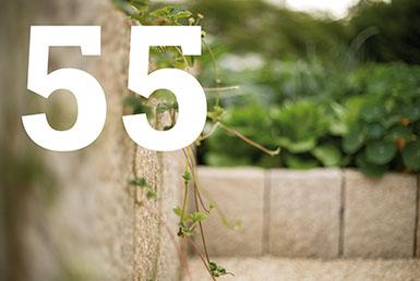 55 Gesteine